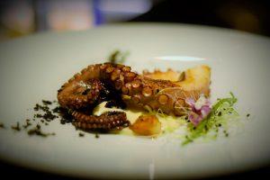 tentacolo polipo